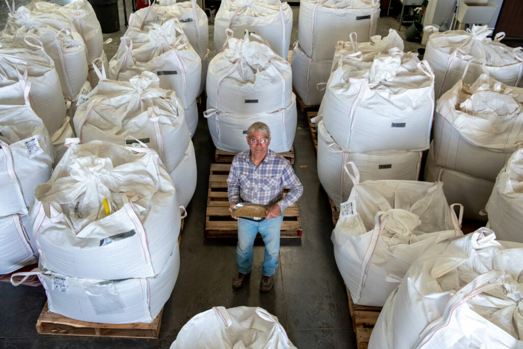 Chip Norton runs a malt factory, Sinagua Malt, in Camp Verde, Arizona, which has created a market for barley, a crop that uses less water than traditional alfalfa. Singua sells its malt to local craft breweries.