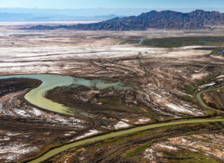 The Colorado River delta in Baja California is a mosaic of old river channels, tidal salt flats, and runoff from agricultural fields to the north. PHOTO BY TED WOOD