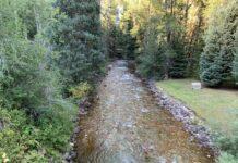 Castle Creek in Aspen