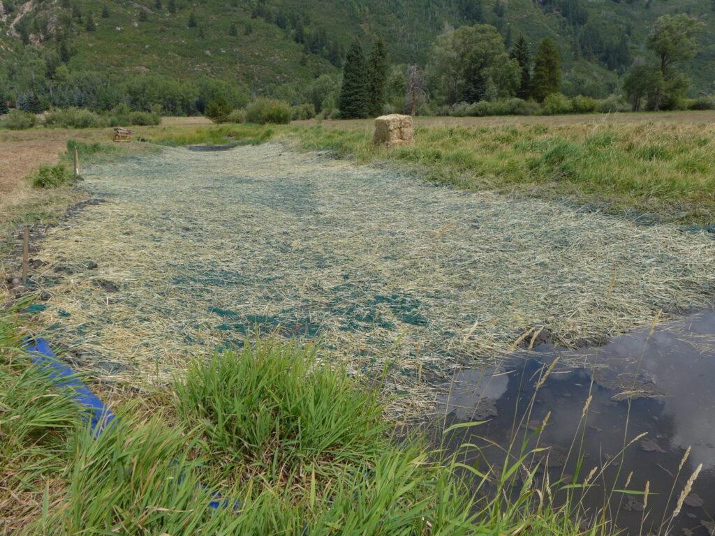 The wetland plug is 130 feet long.