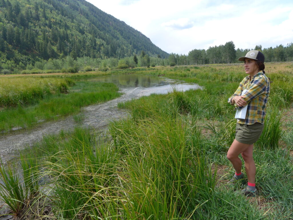 Liza Mitchell, a natural resource planner and ecologist with Pitkin County, stands near the wetlands on the North Star Nature Preserve on Aug. 26. A restoration project aims to keep water in the fen, which is habitat for many kinds of wildlife, including ducks, plovers and moose.