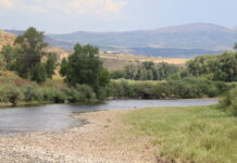 Yampa River at Hayden