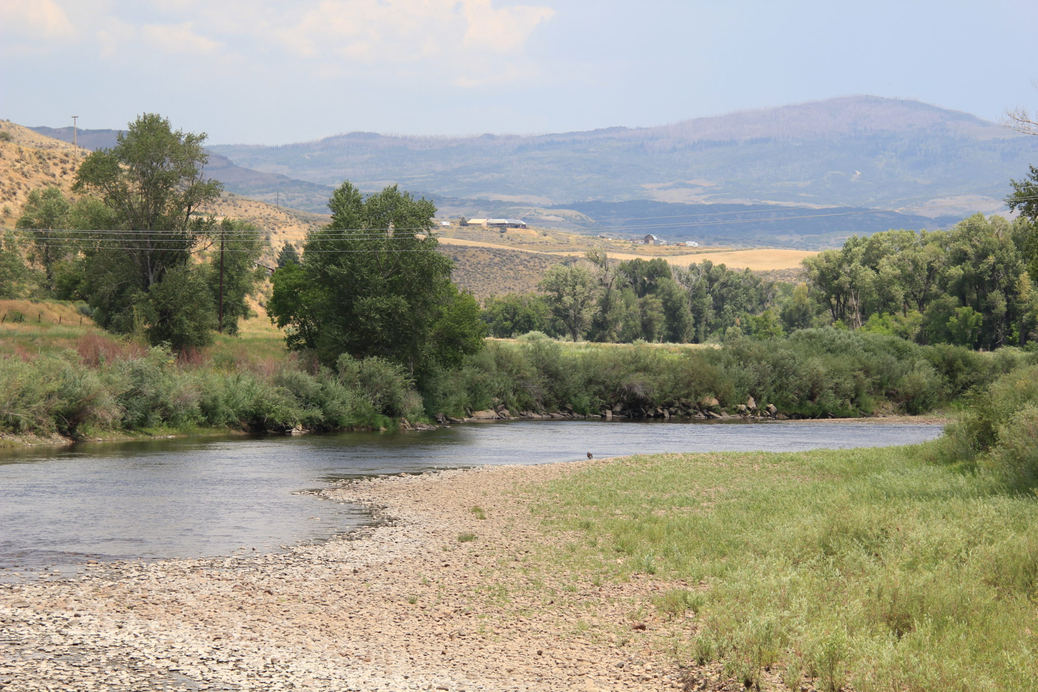 The Yampa River by Hayden