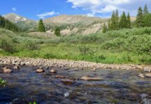 Roaring Fork headwaters