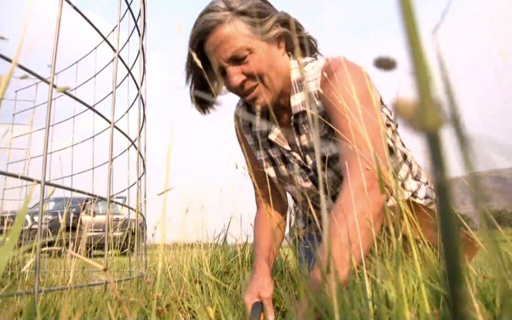 Grand County rancher collects hay samples.
