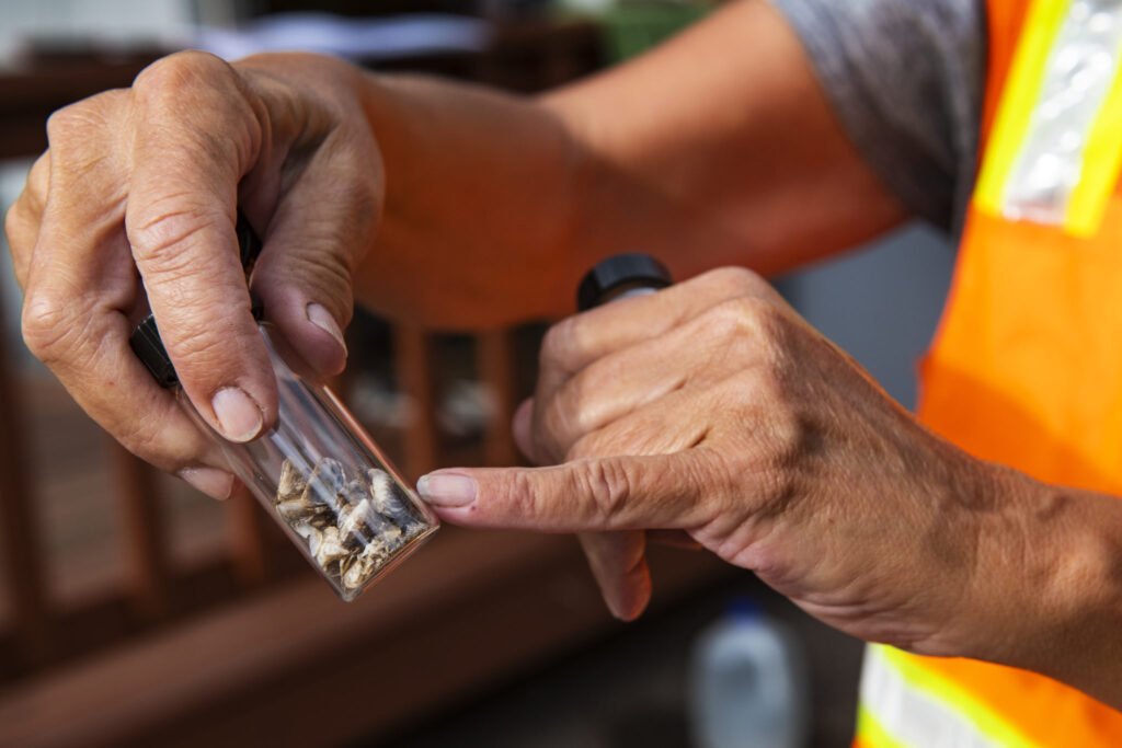 Jaime McCullah points out past samples taken from boats of invasive mussel species at the boat inspection check point at Ruedi Reservoir on Wednesday, July 22, 2020.