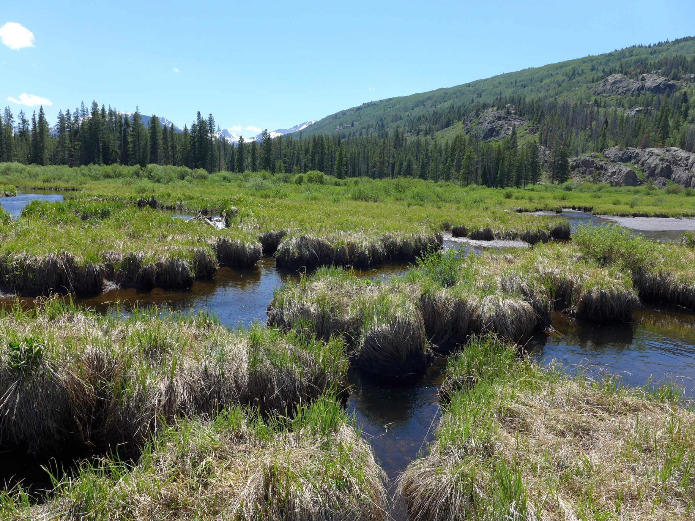 Forest Service approves test drilling for Whitney Reservoir site