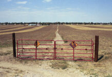 Dry agriculture photo