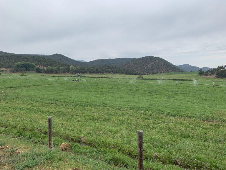 Crystal River Ranch photo