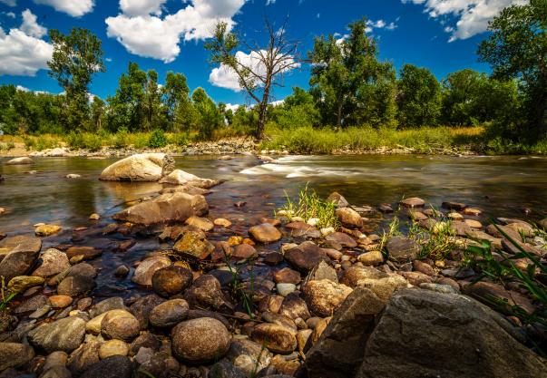 Cache la Poudre River photo