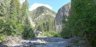 Cow Creek photo