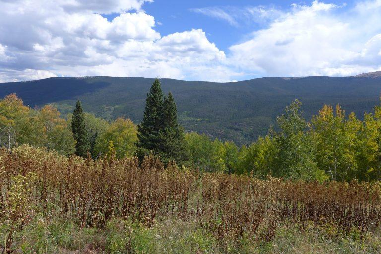 Homestake Valley photo