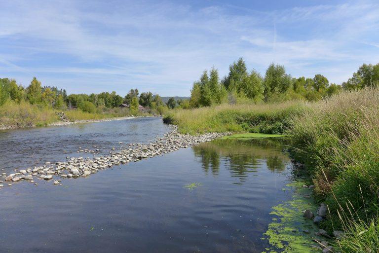 Yampa River photo 2